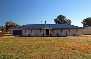 Picture of 8 Purtell Street, Morven NSW 2660