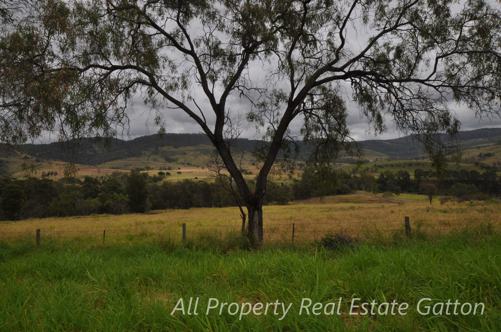 153 East Egypt Road, Mount Whitestone QLD 4347, Image 2