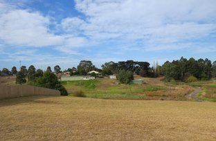 Picture of Lot 39 Cranes Terrace, Eastwood VIC 3875
