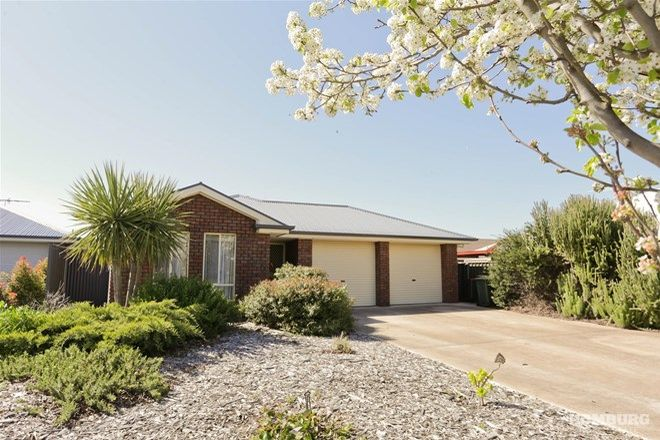 Picture of 10 Pinot Crescent, NURIOOTPA SA 5355