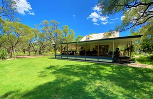 Picture of 89 Sandalwood Drive, Barcaldine QLD 4725