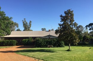 Picture of 303 River Ave, Narromine NSW 2821