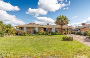 Picture of 17 Archer Street, Collie WA 6225