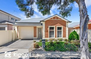 Picture of 24 York Street, Northfield SA 5085