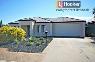 Picture of 38 Springvale Drive, Blakeview SA 5114