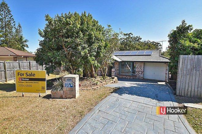 Picture of 8 Garden Terrace, KALLANGUR QLD 4503