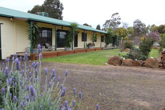 Picture of 65 George Street, NHILL VIC 3418