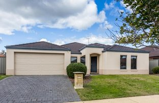 Picture of 9 Curlewis Drive, Baldivis WA 6171