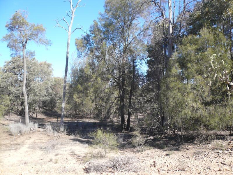 LOT 1 McCASKERS ROAD, Tara QLD 4421, Image 0