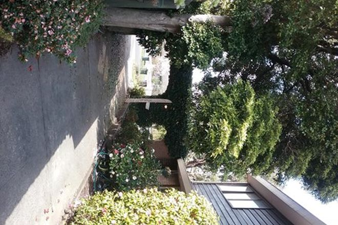 Picture of 5 Lola Street, MULGRAVE VIC 3170