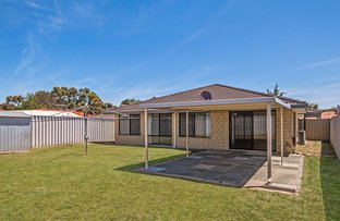 Picture of 11 Round Hill Drive, Port Kennedy WA 6172