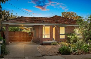 Picture of 28 Tadstan Drive, Tullamarine VIC 3043