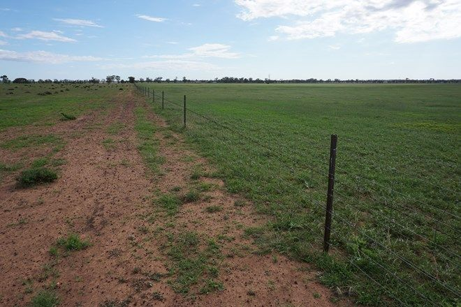 Picture of 'Winderra Park' Bellarwi Road, WEST WYALONG NSW 2671