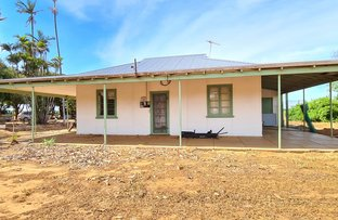 Picture of 656 South River Road, Carnarvon WA 6701