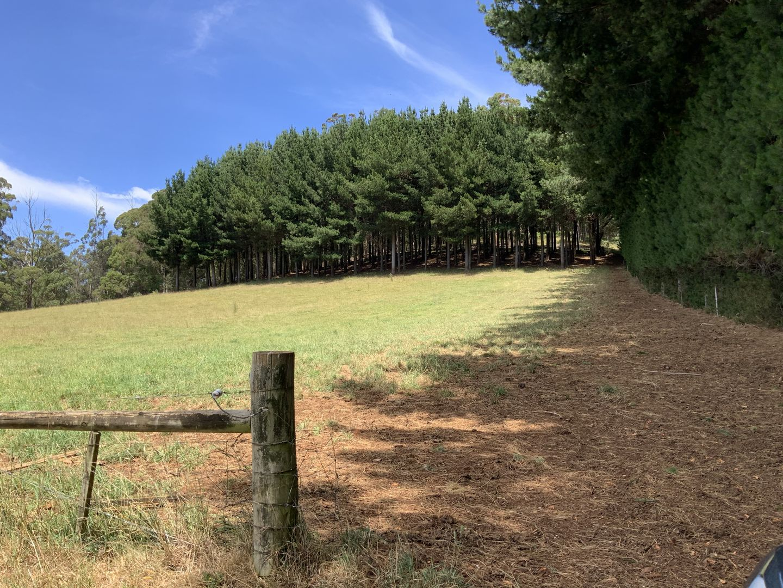 201 Cradle Mountain Road, Wilmot TAS 7310, Image 1
