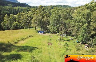 Picture of 1/65 Old Tweed Road, Wadeville NSW 2474