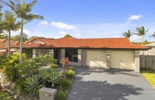 20 Hilliards Park Drive, Wellington Point QLD 4160