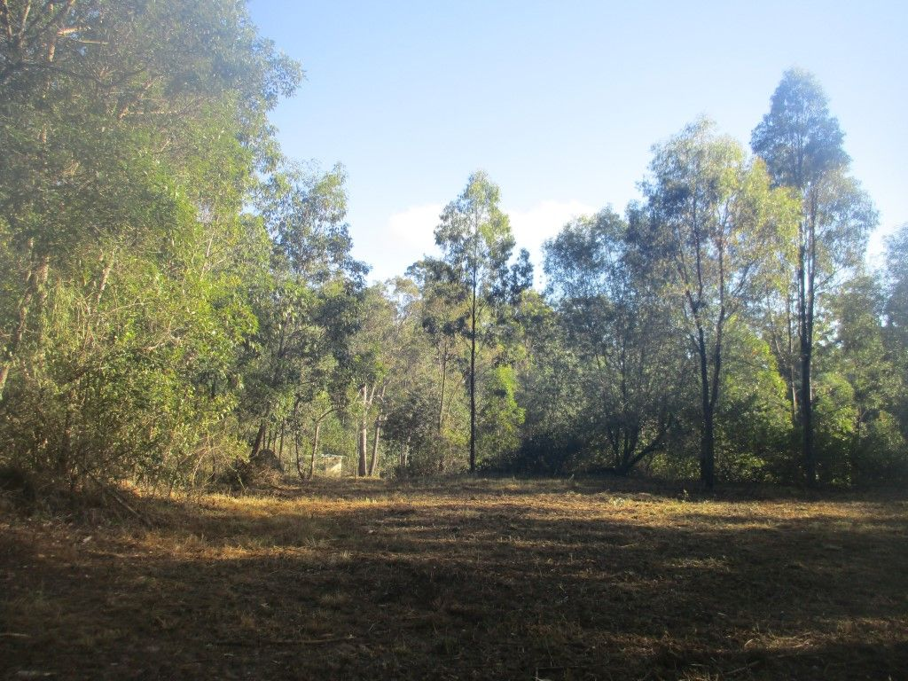Lot 202 Arborthirtyseven Road, Glenwood QLD 4570, Image 2