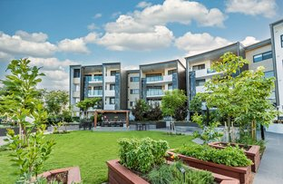 Picture of 5204/172 Venner Road, Yeronga QLD 4104