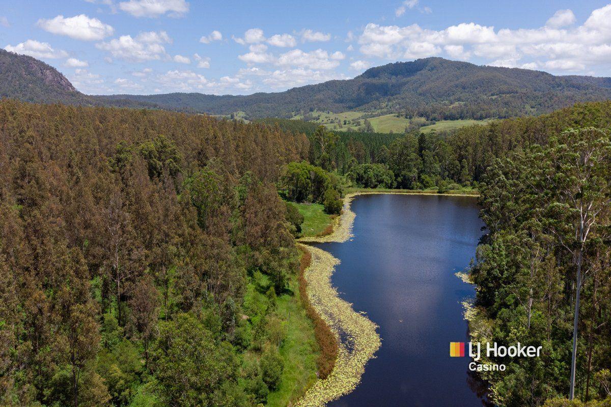 520 Capeen Creek Road, Old Bonalbo NSW 2469, Image 1