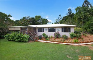 Picture of 1 Springfield Circuit, Cooroy QLD 4563