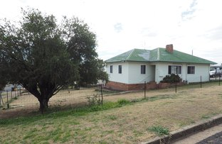 Picture of 17 Holden, Warialda NSW 2402