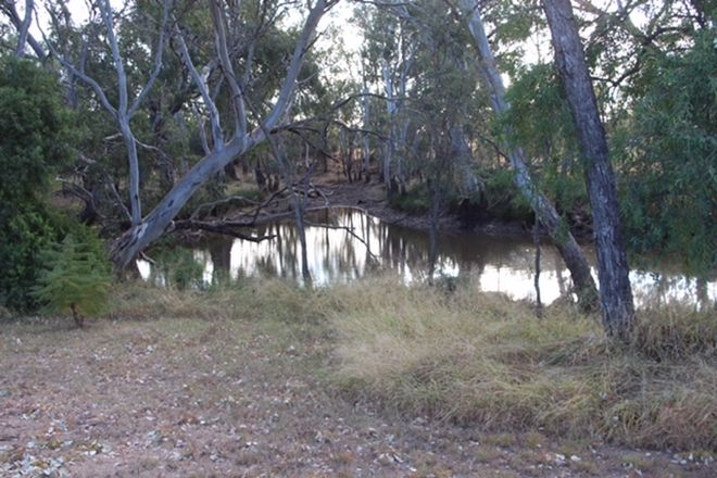 Picture of 284 Meandarra-Talwood Road, MEANDARRA QLD 4422