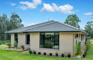 Picture of 567 Wooli Road, Pillar Valley NSW 2462