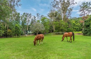 Picture of 453 Upper Brookfield Road, Upper Brookfield QLD 4069