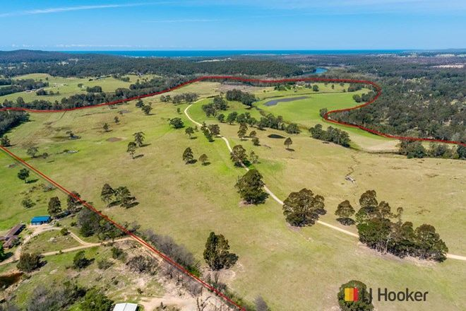 Picture of 1109 Princes Highway, MOGO NSW 2536