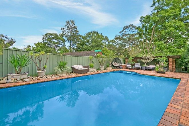 Picture of 36A Belvedere Ave, CASTLE HILL NSW 2154