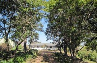 168C PIONEER ROAD, Singleton NSW 2330