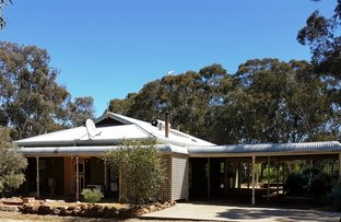 Picture of 341 Berry Brow Road, Bakers Hill WA 6562