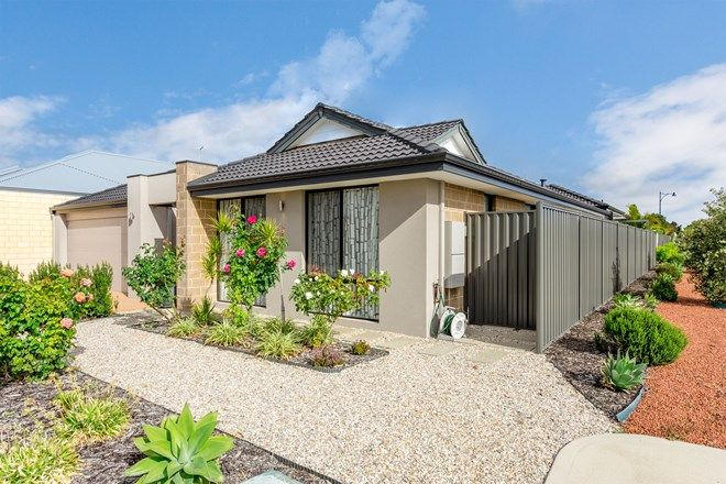 Picture of 1 Topiary Avenue, PIARA WATERS WA 6112