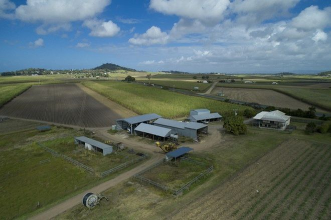 Picture of 1102 Bruce Highway, FARLEIGH QLD 4741