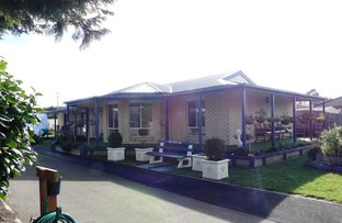 Picture of 3 Kaye Elizabeth Pl, Deloraine TAS 7304