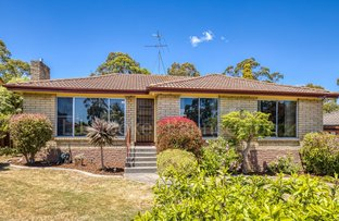 Picture of 100 Poplar Parade, Youngtown TAS 7249