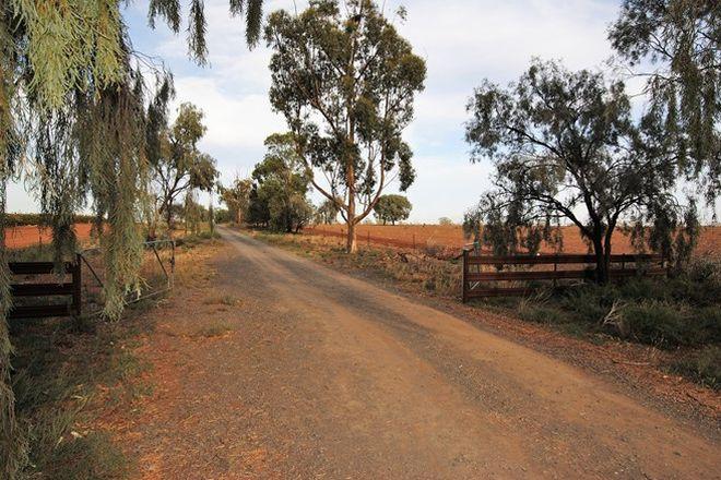 Picture of Farm 2360 Kidman Way, WARBURN NSW 2680