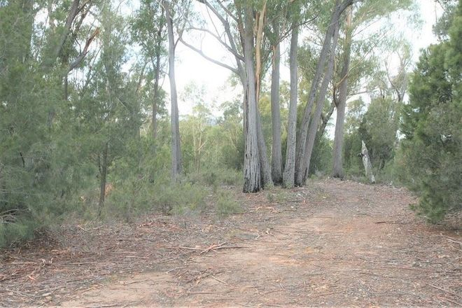 Picture of PID 6792803 Trout Road, UPPER SCAMANDER TAS 7215