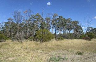 Picture of Lot 12 Cartens Lane, Tara QLD 4421