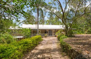 Picture of 545 Fig Tree Pocket Road, Fig Tree Pocket QLD 4069