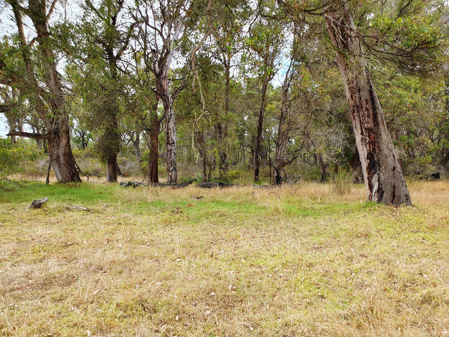 Lot 12/439 Harewood Road, Scotsdale WA 6333, Image 2