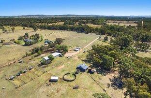 584 Yarrawonga Road, Mudgee NSW 2850