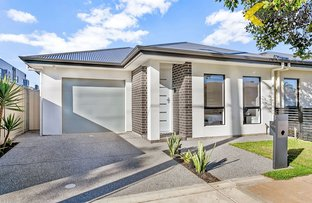Picture of 49A Harrison Road, Devon Park SA 5008