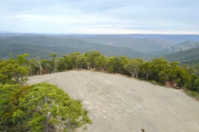 Picture of Lot 92, 1189 Box Ridge Road, TURONDALE NSW 2795