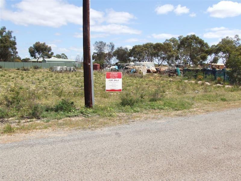 Lot 112 Station Street, Coorow WA 6515, Image 0