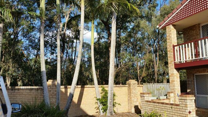 46/88 Kameruka St, Calamvale QLD 4116, Image 1