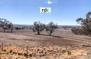 Picture of 4682 Gwydir Highway, Inverell NSW 2360