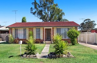 Picture of 12 Grose Ave, North St Marys NSW 2760