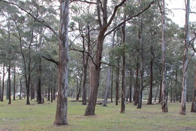 Picture of DARAWANK NSW 2428